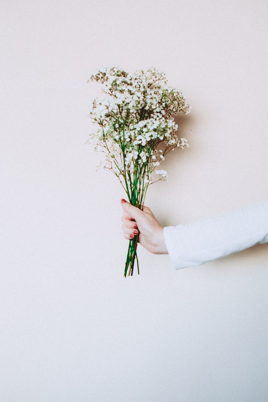 photo of woman s hand holding out white flowers in front of white background