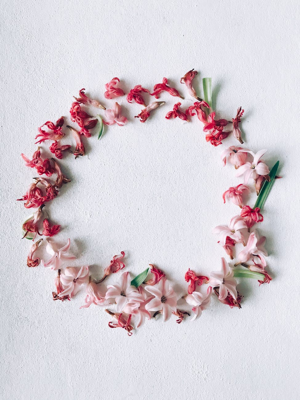 red and pink flower wreath